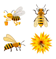 bee icon set cartoon style vector image