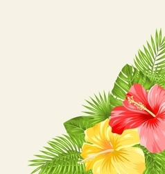 Vintage Background with Colorful Hibiscus Flowers vector image vector image
