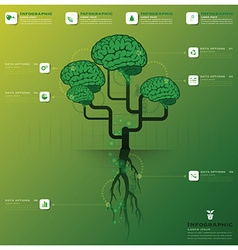 Brain Tree And Root Infographic Design Template vector