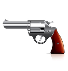 object revolver vector image