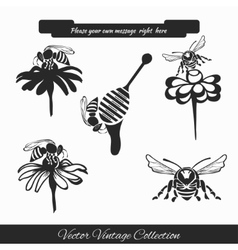Set for honey sketches 1 vector image