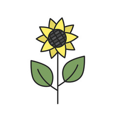 sunflower color icon vector image