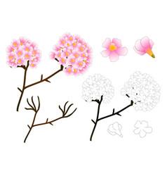 pink trumpet flower outline vector image vector image