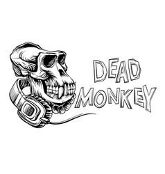 dead monkey skull vector image