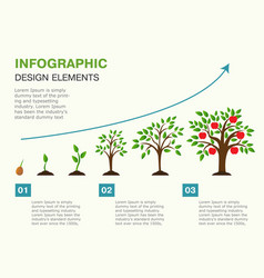 Infographic of planting tree seeds sprout vector