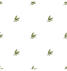 Seamless pattern with hand drawn plant elements vector