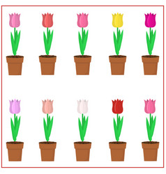 Set multi-colored tulips in pots on a white vector