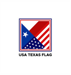 Usa texas flag vector