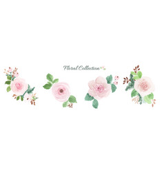 watercolor floral bouquet design element set vector image