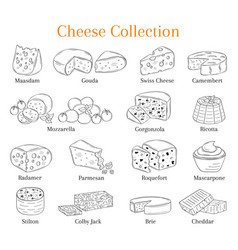 Set of different types of cheese hand vector