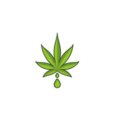 cannabis leaf marijuana and drop water logo design vector image