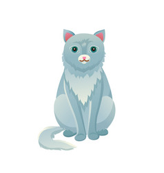 cat sitting calmly domestic pet vector image