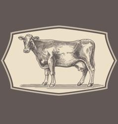 Hand drawn cow emblem vector