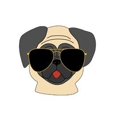 Pug dog in glasses vector image