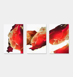 set 3d fluid design cards abstract liquid vector image