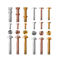 Set stainless steel bolts copper and bronze vector