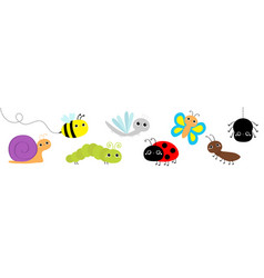 snail beetle ladybug ladybird dragonfly ant vector image