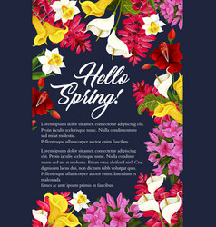 Springtime flowers blooming bunch poster vector