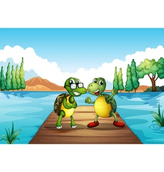 Two turtles standing at the diving board vector