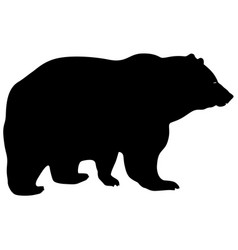 silhouette brown bear on a white background vector image vector image