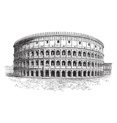 Colosseum only a short time as hypogeum vector