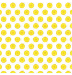 Flat yellow sunflower blooming pattern background vector