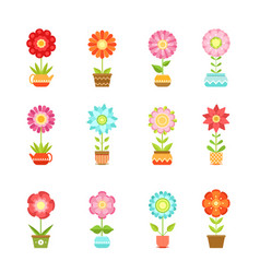 Flowers in different pots floral set vector