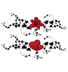 lily hearts and ivy vector image