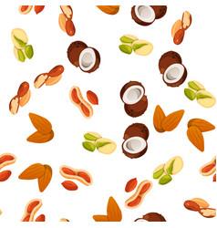 nuts vector image