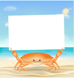 sea crab with white paper on a sea sand beach vector image