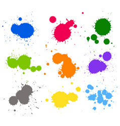 Wallpaper theme with different colors splash on vector