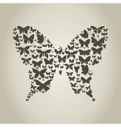 Silhouette the butterfly vector image vector image