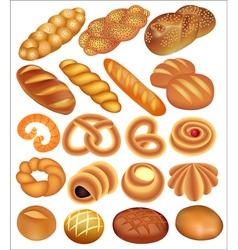 set of bread wheat vector image vector image