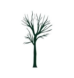 dry tree plant vector image