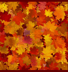 autumn maple leaves seamless background vector image