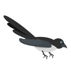 curious magpie icon flat style vector image