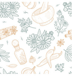 herbs and spices seamless pattern natural organic vector image