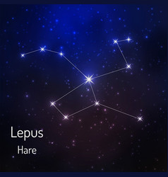 Onstellation in the night starry sky vector