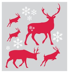 Raindeer Christmas with snowflake vector