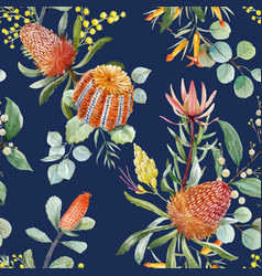 watercolor australian banksia pattern vector image