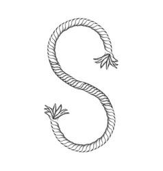 silhouette nautical break rope icon design vector image vector image
