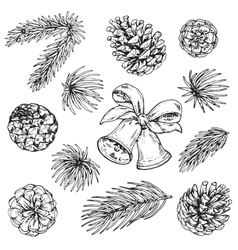 Collection of pine cones and Christmas bells vector image