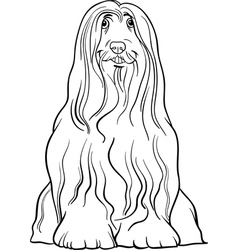 Bearded collie dog cartoon for coloring vector