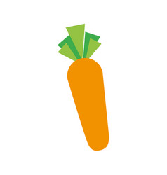 carrot vegetable fresh supermarket food design vector image