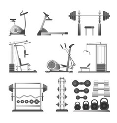 Gym or fitness sport equipment and accessories vector