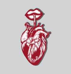 hand drawn of human heart with lips and straw vector image