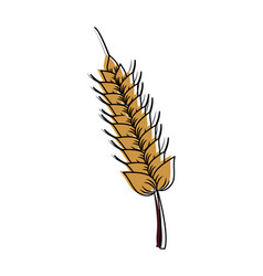 harvest of wheat symbol vector image