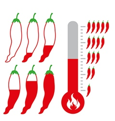 Level of Hot and spicy Chili Pepper vector