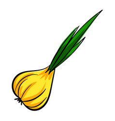 onion icon cartoon style vector image