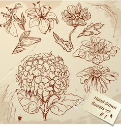 Set of Vintage Realistic graphic flowers vector image